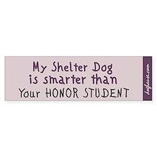 Shelter Dog Bumper Sticker (plum)