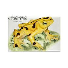Panamanian Golden Frog Rectangle Magnet