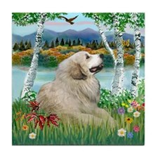 Country Birches & Great Pyrenees Tile Coaster
