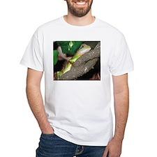 Chinese Water Dragons Shirt