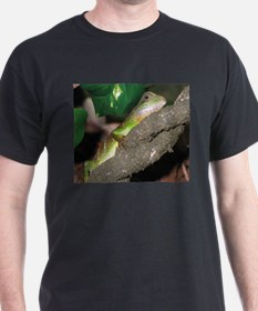Chinese Water Dragons T-Shirt