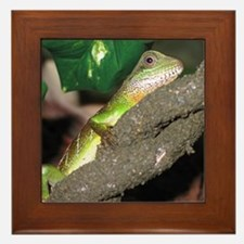 Chinese Water Dragons Framed Tile