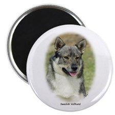 Swedish Vallhund 9K1D-14 Magnet