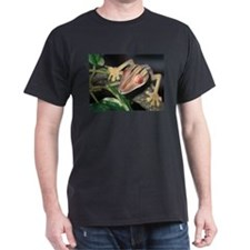Henkeli Leaf Tail Gecko:Atsi T-Shirt