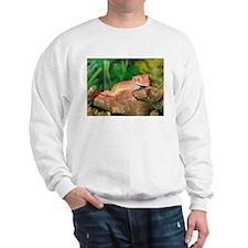 Crested Gecko:Gaya Sweatshirt