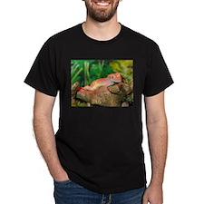 Crested Gecko:Gaya T-Shirt