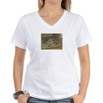Tortoise Shelby A'Tuin Women's V-Neck T-Shirt