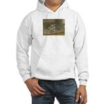 Tortoise Shelby A'Tuin Hooded Sweatshirt
