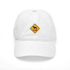 Border Terrier X-ing Baseball Cap