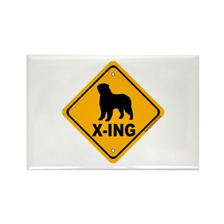 Bernese X-ing Rectangle Magnet (10 pack)