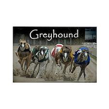 Greyhounds Rectangle Magnet