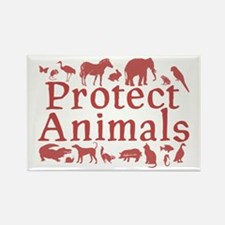 Protect Animals Rectangle Magnet (100 pack)
