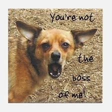 Angry Chihuahua Tile Coaster