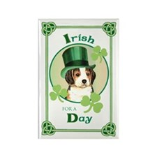 St. Patrick Beagle Rectangle Magnet