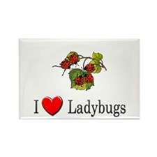 I Love Ladybugs Rectangle Magnet