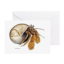Hermit Crab Greeting Cards (Pk of 10)