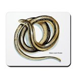Glass Lizard Snake Mousepad