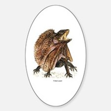 Frilled Lizard Oval Decal