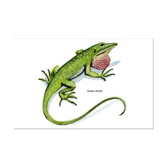 Green Anole Lizard Posters