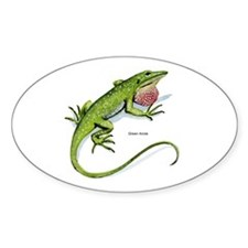Green Anole Lizard Oval Decal