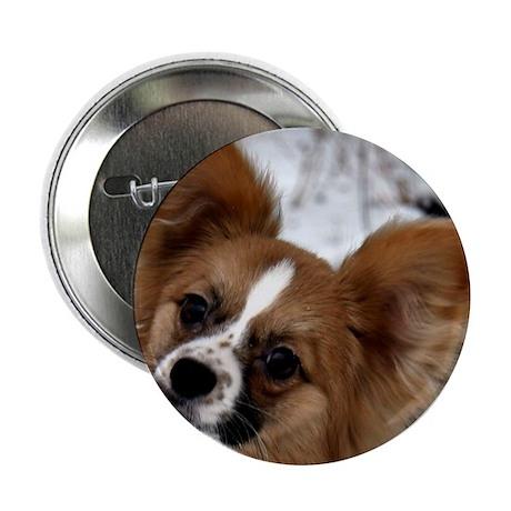 """Cute Papillion 2.25"""" Button (100 pack)"""