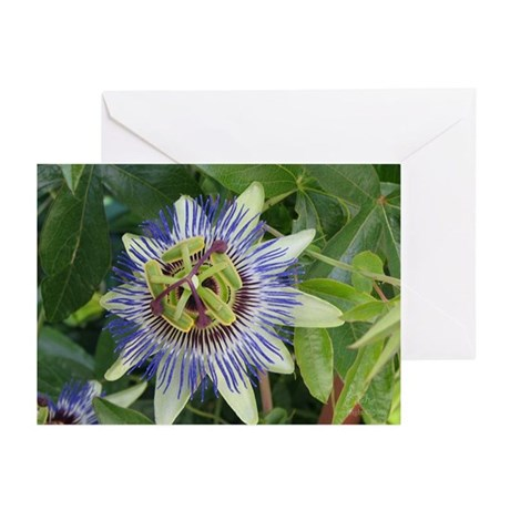 Passion Flower BLANK Cards (Pk of 10)