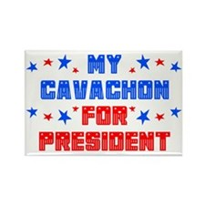 Cavachon PRESIDENT Rectangle Magnet