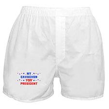 Cavachon PRESIDENT Boxer Shorts