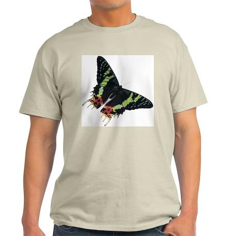 Pretty Moth Light T-Shirt