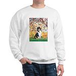 Spring / Collie Sweatshirt