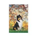 Spring / Collie Rectangle Magnet