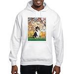 Spring / Collie Hooded Sweatshirt