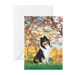 Spring / Collie Greeting Cards (Pk of 20)
