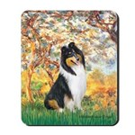 Spring / Collie Mousepad