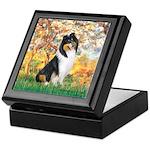 Spring / Collie Keepsake Box