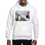Creation / Collie Hooded Sweatshirt