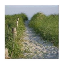New England Coastal Dune Path Tile Coaster