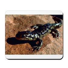 Tiger Salamander Mousepad