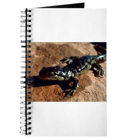 Tiger Salamander Journal