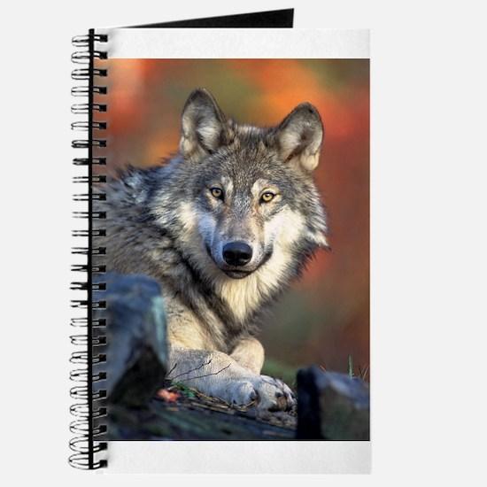 Grey Wolf Journal