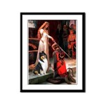Accolade / Collie (tri) Framed Panel Print
