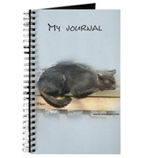 Jonesy Sleeping Journal