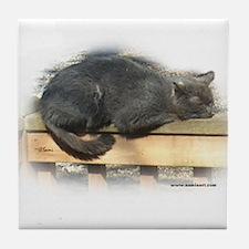 Jonesy Sleeping Tile Coaster