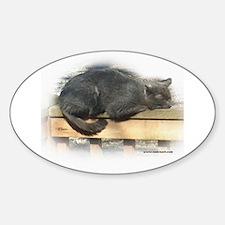 Jonesy Sleeping Oval Decal