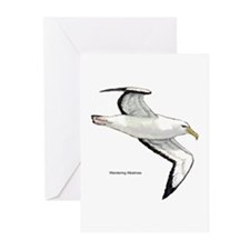 Wandering Albatross Bird Greeting Cards (Package o