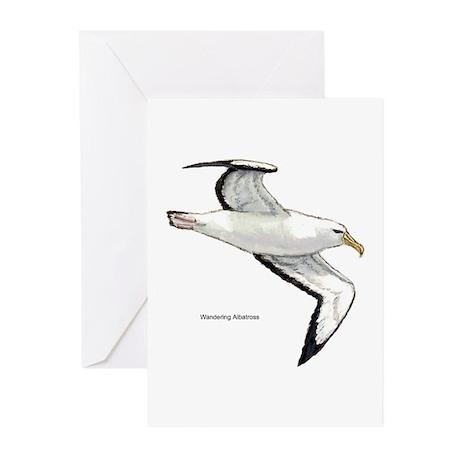 Wandering Albatross Bird Greeting Cards (Package o