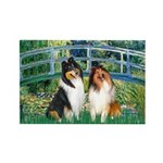 Bridge / Two Collies Rectangle Magnet (10 pack)