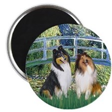 Bridge / Two Collies Magnet