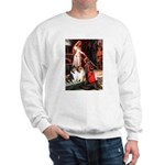Accolade / Collie pair Sweatshirt
