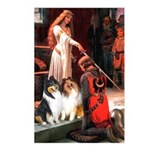 Accolade / Collie pair Postcards (Package of 8)